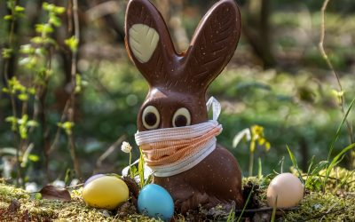 Suklaan myrkyllisyys lemmikeille